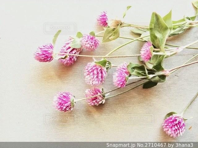 テーブルの上のピンクの花の写真・画像素材[2710467]