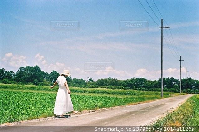 夏空と踊るの写真・画像素材[2379657]