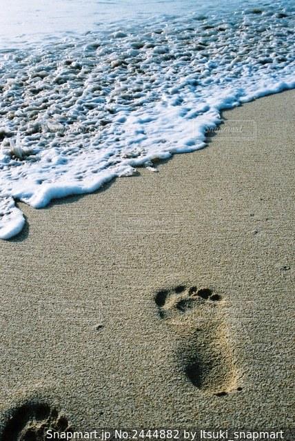 浜辺の足跡の写真・画像素材[2444882]
