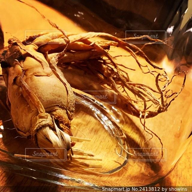 瓶の中の高麗人参の写真・画像素材[2413812]