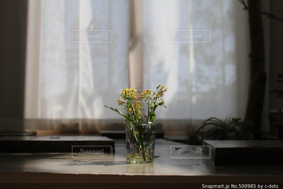 カフェの写真・画像素材[500985]
