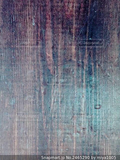 木のクローズアップの写真・画像素材[2465290]