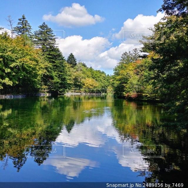 雲場池の写真・画像素材[2489856]