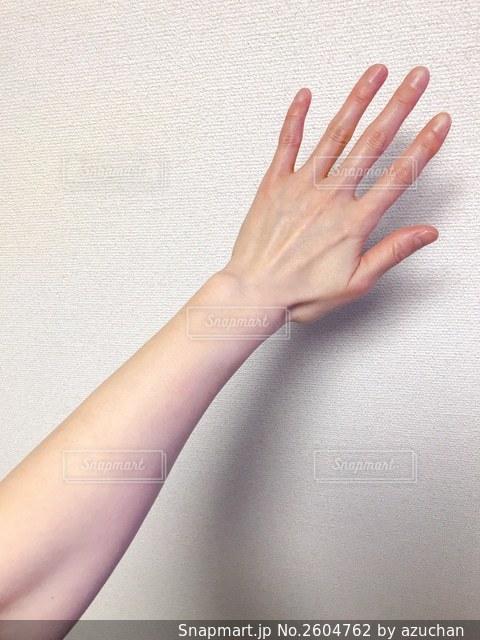 女性の腕の写真・画像素材[2604762]