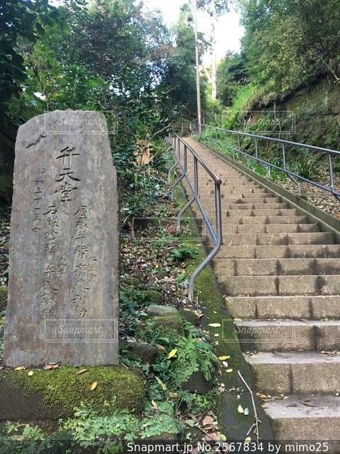 円覚寺 弁天堂の写真・画像素材[2567834]