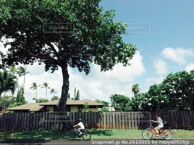 ハワイの写真・画像素材[2610055]