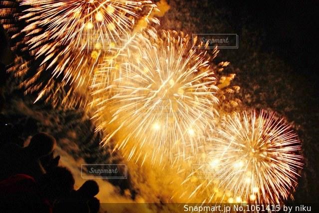 空に花火の写真・画像素材[1061415]