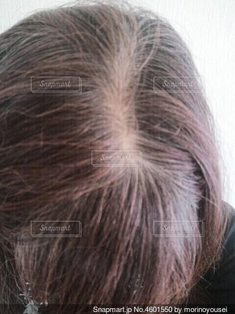 60代の女性の分け目の白髪 カラートリートメント前の写真・画像素材[4601550]