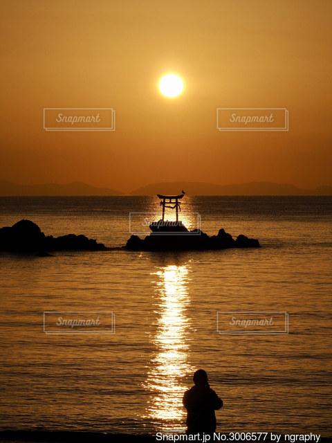 鳥居と鳥と海を照らす光の道の写真・画像素材[3006577]