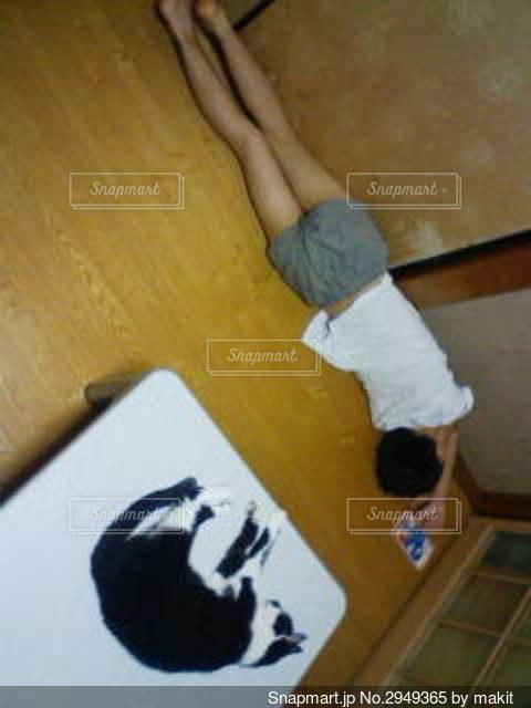 猫と相似形で昼寝する男の子の写真・画像素材[2949365]