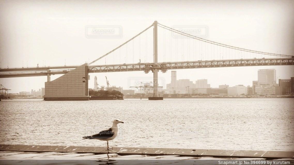 橋,日本の絶景,東京,世界の絶景,モノトーン,レインボーブリッジ,東京湾,セピア,晴海埠頭,かもめ