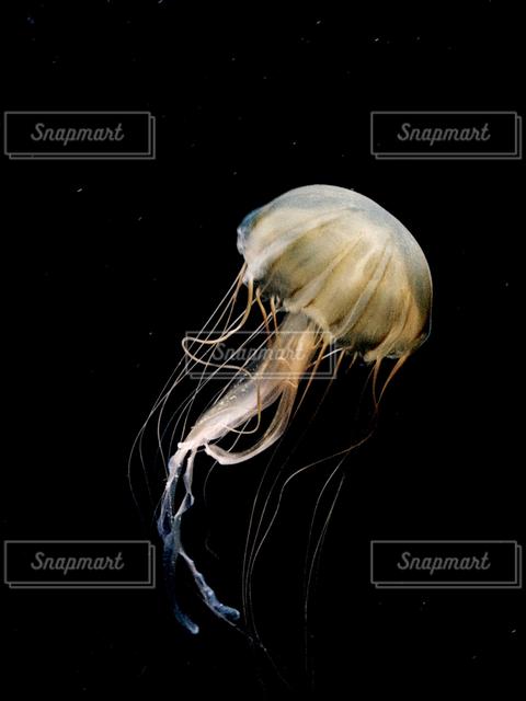 海の写真・画像素材[122362]