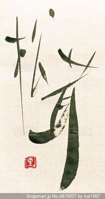 松茸の写真・画像素材[4874207]