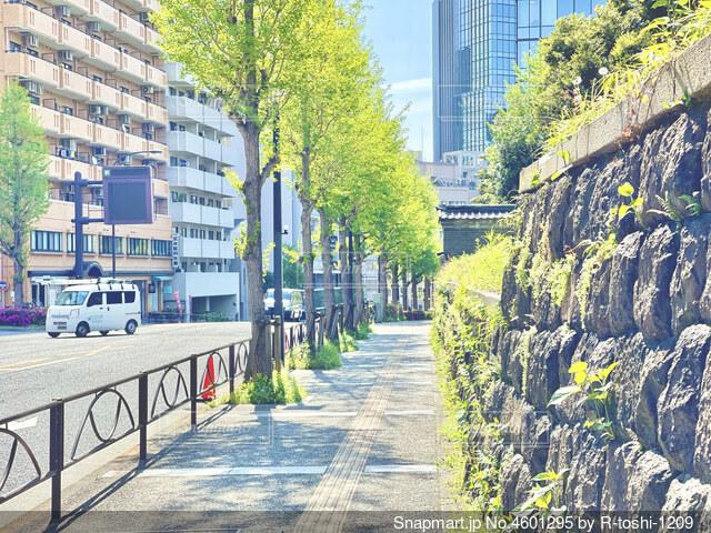 街並みの写真・画像素材[4601295]