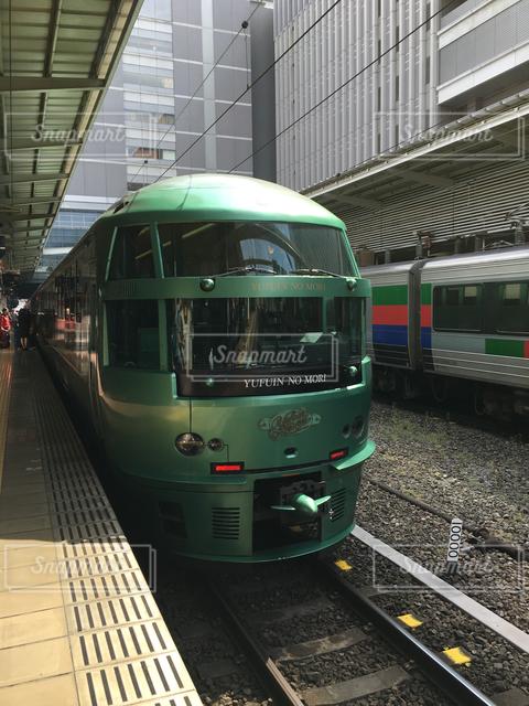 緑 - No.121858