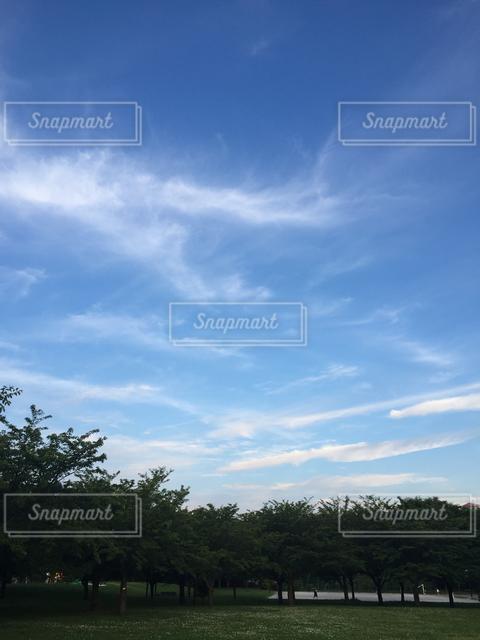 自然の写真・画像素材[121949]
