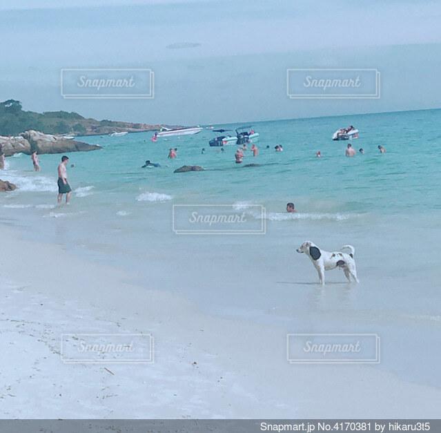 水の体の近くのビーチで人々のグループの写真・画像素材[4170381]