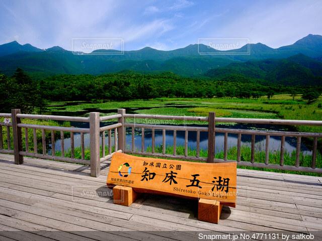 知床五湖の写真・画像素材[4771131]