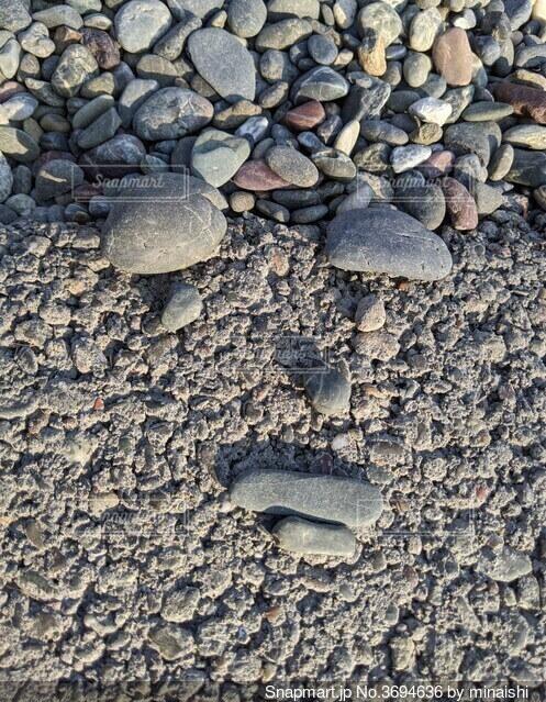 砂利でお顔の写真・画像素材[3694636]
