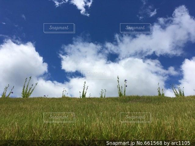 風景の写真・画像素材[661568]