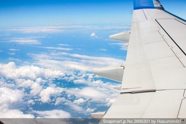 青空を飛ぶ飛行機の翼の写真・画像素材[3895301]
