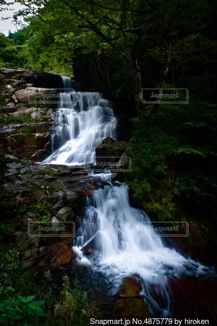 深山の滝の写真・画像素材[4875779]