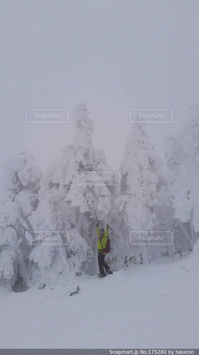 樹氷 - No.175280