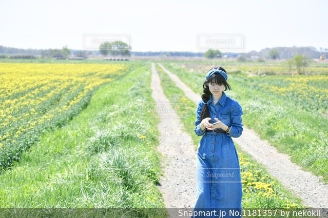 春旅の写真・画像素材[1181357]