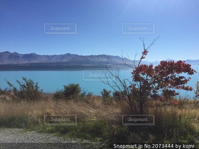 プカキ湖の写真・画像素材[2073444]