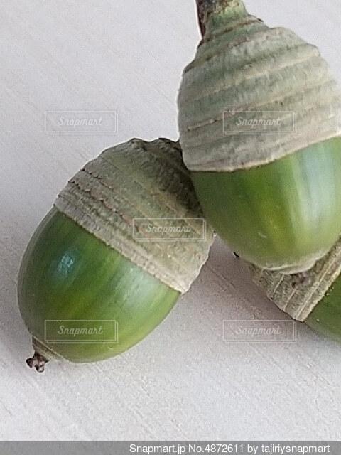 緑のドングリ3つの写真・画像素材[4872611]