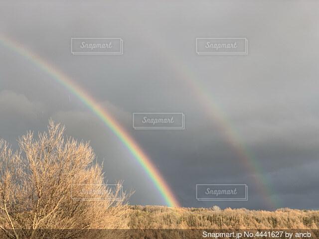 虹の向こうに…の写真・画像素材[4441627]