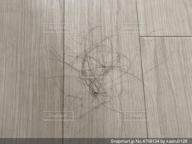 床に落ちた髪の毛の写真・画像素材[4769134]