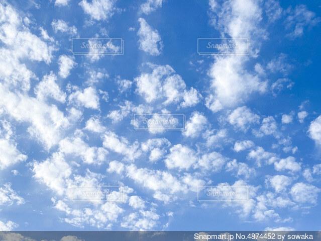 空の雲の群の写真・画像素材[4874452]