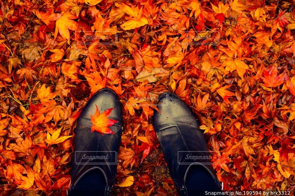 自然,公園,秋,自撮り,紅葉,赤,足元,足,もみじ,落ち葉,ブーツ,おしゃれ