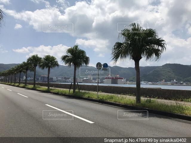 奄美大島の風景の写真・画像素材[4769749]
