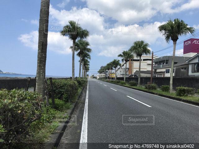奄美大島の風景の写真・画像素材[4769748]