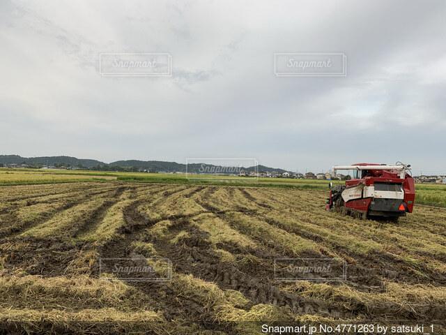 稲刈り風景の写真・画像素材[4771263]