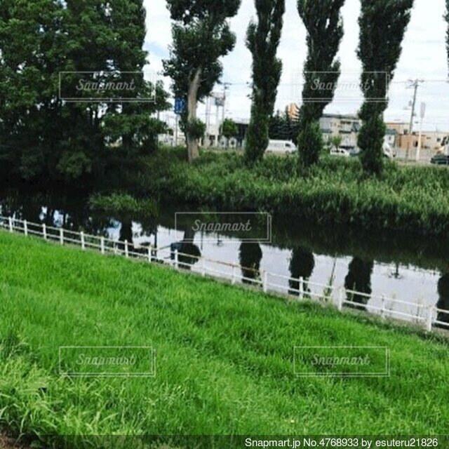 街中静かな流れの写真・画像素材[4768933]