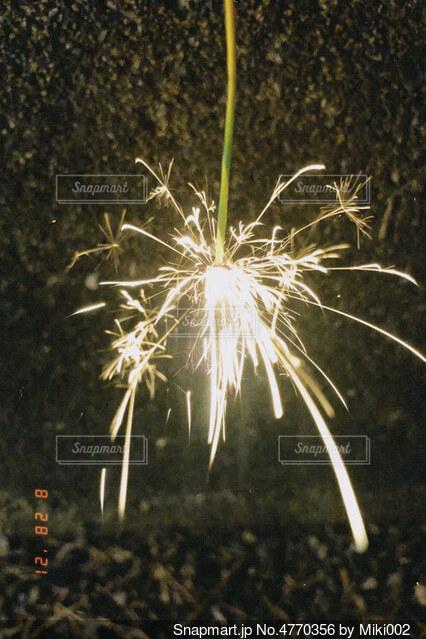 花火の写真・画像素材[4770356]