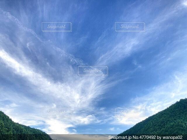 翼を広げた空の写真・画像素材[4770492]