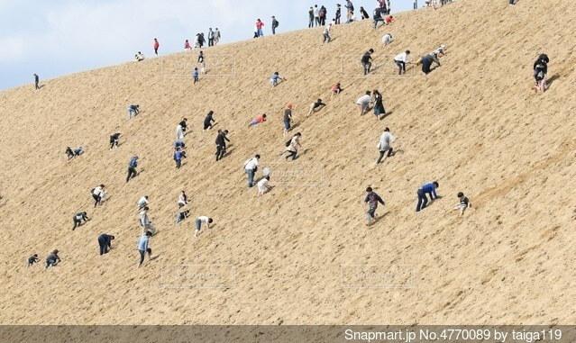 砂丘の壁を登る人の写真・画像素材[4770089]