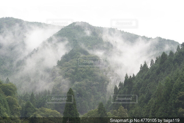 山に降りてきた雲の写真・画像素材[4770105]