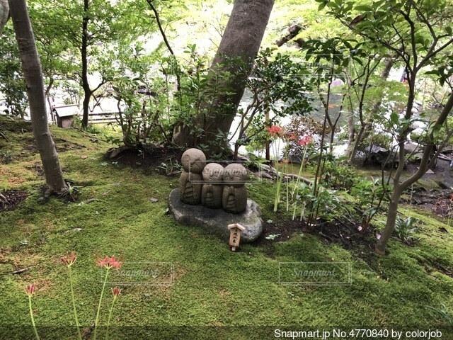 鎌倉のお地蔵様の写真・画像素材[4770840]