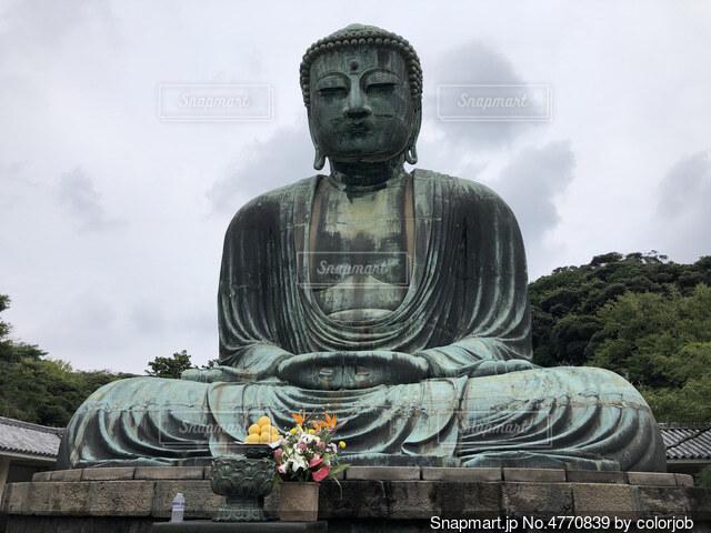 鎌倉大仏の写真・画像素材[4770839]