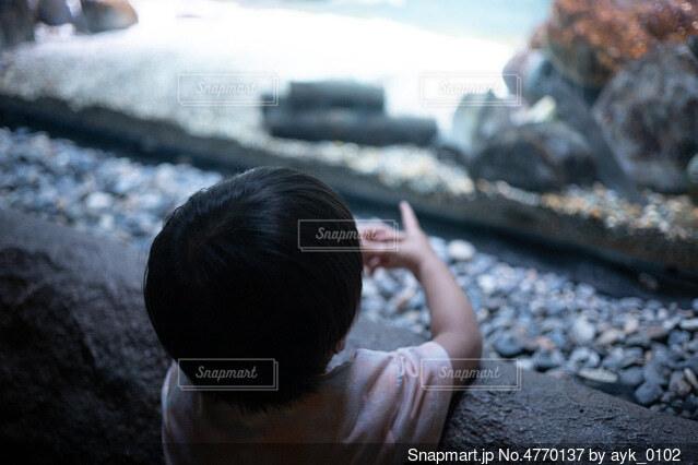 水槽の前に立っている小さな男の子の写真・画像素材[4770137]