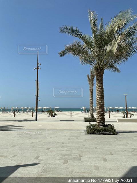 晴れた日のビーチの写真・画像素材[4779831]