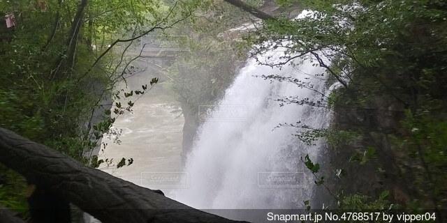 森の中の大きな滝の写真・画像素材[4768517]