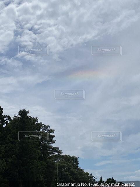 空の雲の群の写真・画像素材[4769586]