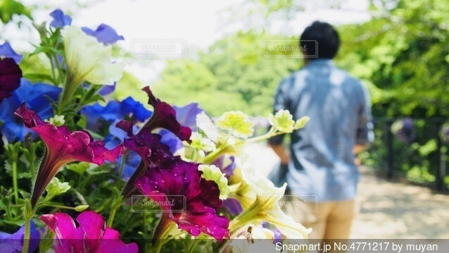 花とパパの写真・画像素材[4771217]