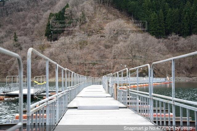金属製のフェンスを越える橋の写真・画像素材[4770323]